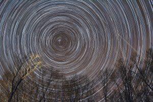 Star Trails, by Rebecca Browder